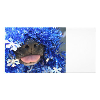 Black dog nose tongue out blue tinsel card