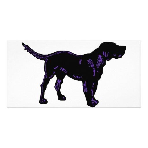 Black Dog Photo Cards