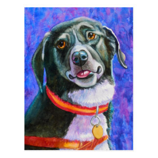 Black Dog Raspberry Postcard