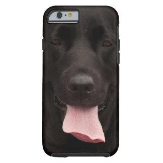 Black dog tough iPhone 6 case