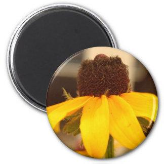 Black Eyed Susan Blossom Magnet Fridge Magnet
