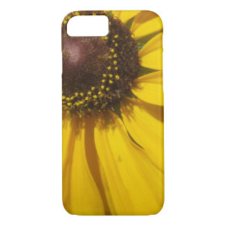 Black Eyed Susan Cell Cover