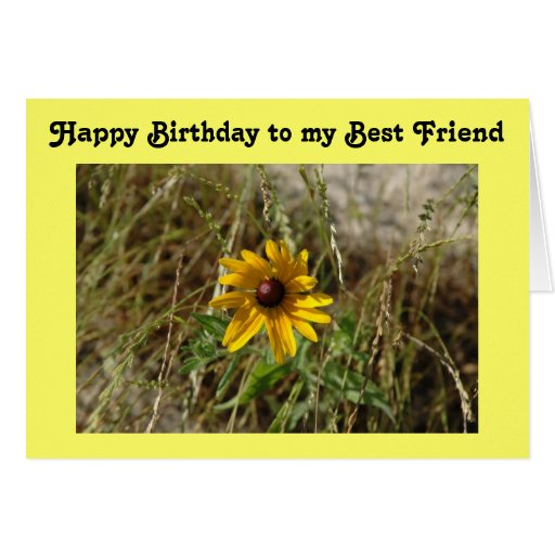Black-Eyed Susan Daisy Birthday Greeting Cards