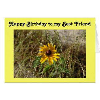 Black-Eyed Susan Daisy Birthday Greeting Card