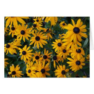 Black-eyed Susan Flowers Card