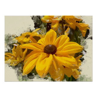 Black Eyed Susan Flowers Glowing in Sunshine Poster