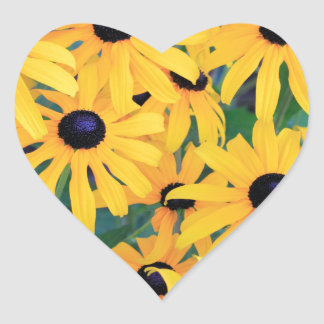 Black Eyed Susan Flowers in Deep Yellow Heart Sticker