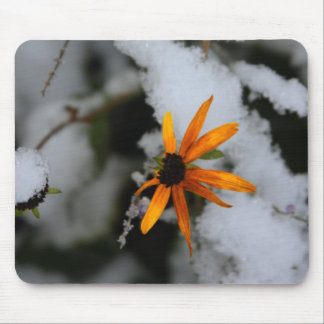 black eyed susan in the first snow mouse pad