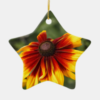 Black-eyed-Susan (Rudbeckia hirta) Ceramic Ornament