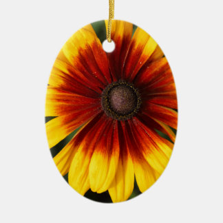 Black-eyed-Susan (Rudbeckia hirta) Ceramic Oval Ornament