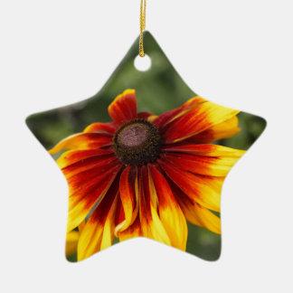 Black-eyed-Susan (Rudbeckia hirta) Ceramic Star Ornament