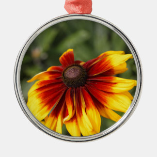 Black-eyed-Susan (Rudbeckia hirta) Silver-Colored Round Ornament