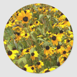 Black-Eyed Susans Classic Round Sticker