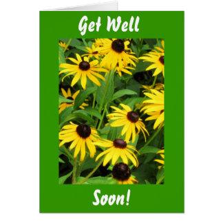 Black Eyed Susans, Get Well, Soon! Card