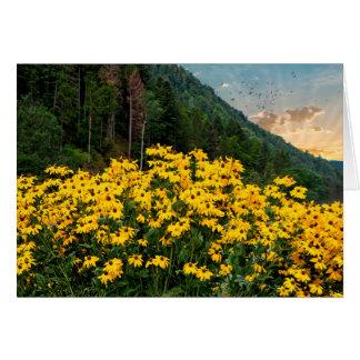 Black-eyed Susans in mountains Card