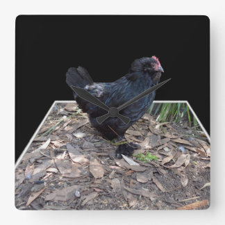 Black Fluffy Rooster Dimensional Art, Square Wall Clock