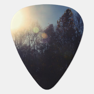 Black Forest Guitar Pick