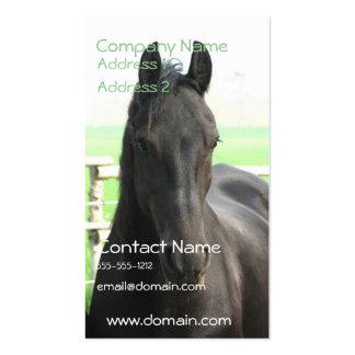 Black Friesian Horse Business Card
