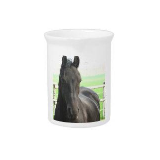 Black Friesian Horse Pitcher
