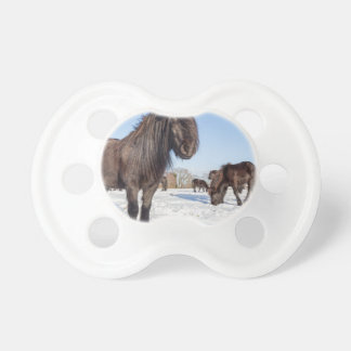 Black frisian horses in winter snow pacifier