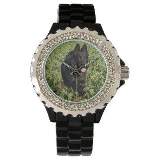 Black German Shepherd Watch