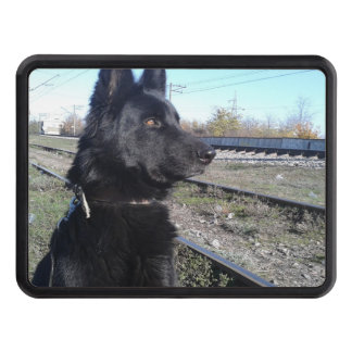 Black GSD with Train Tracks Trailer Hitch Cover