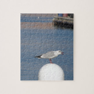 Black-headed gull perched on post calling jigsaw puzzle