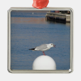 Black-headed gull perched on post calling metal ornament