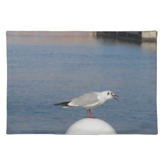 Black-headed gull perched on post calling placemat