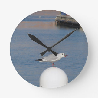 Black-headed gull perched on post calling round clock