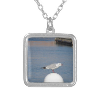 Black-headed gull perched on post calling silver plated necklace