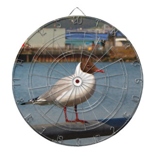 Black-headed gull, Scotland Dartboard