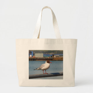 Black-headed gull, Scotland Large Tote Bag