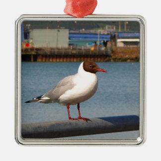 Black-headed gull, Scotland Metal Ornament