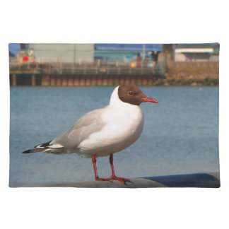 Black-headed gull, Scotland Placemat
