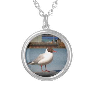 Black-headed gull, Scotland Silver Plated Necklace