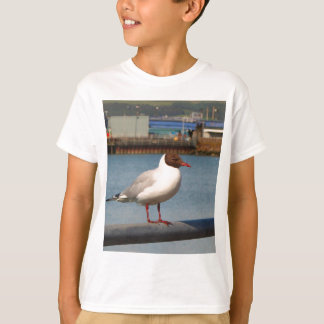 Black-headed gull, Scotland T-Shirt