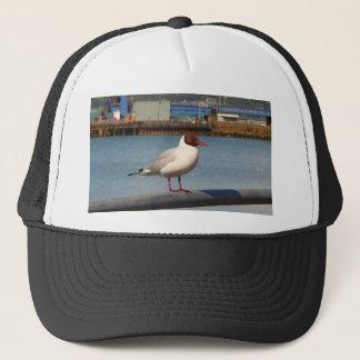 Black-headed gull, Scotland Trucker Hat