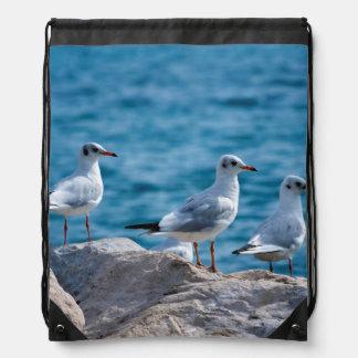 Black-headed gulls, chroicocephalus ridibundus drawstring bag