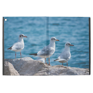 "Black-headed gulls, chroicocephalus ridibundus iPad pro 12.9"" case"