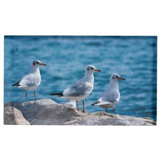 Black-headed gulls, chroicocephalus ridibundus table card holder