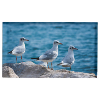Black-headed gulls, chroicocephalus ridibundus table card holder