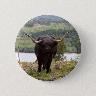 Black Highland cattle, Scotland 2 Inch Round Button