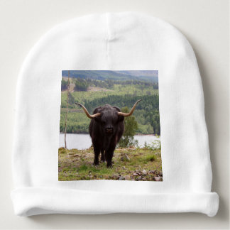 Black Highland cattle, Scotland Baby Beanie