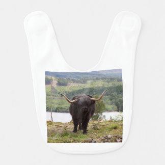 Black Highland cattle, Scotland Bib