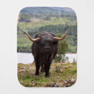 Black Highland cattle, Scotland Burp Cloths