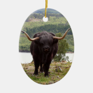 Black Highland cattle, Scotland Ceramic Ornament