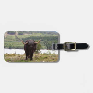 Black Highland cattle, Scotland Luggage Tag