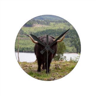 Black Highland cattle, Scotland Round Clock