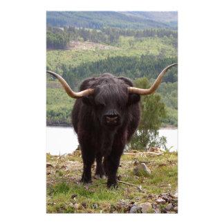 Black Highland cattle, Scotland Stationery